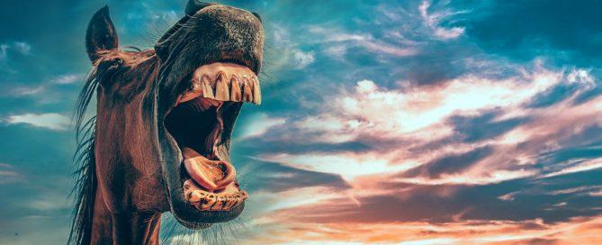 Izbjeljivanje-zuba-Dentalharmony